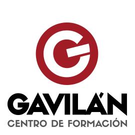 logo Autoescuela Gavilán